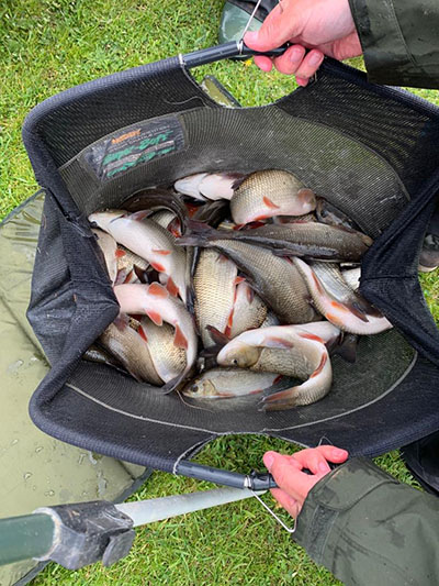 Fish caught at Oak Tree Fisheries